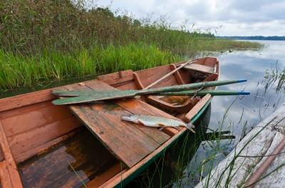 Angeln auf Hecht vom Boot aus